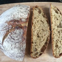 No Knead Courgette sourdough Bread