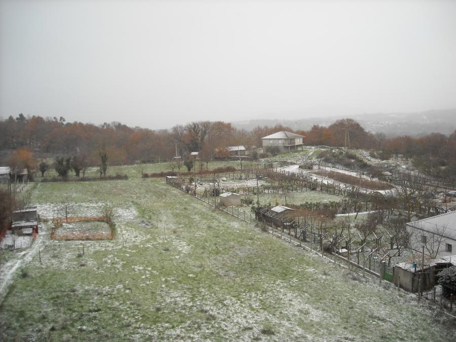 Vista de la nieve en Celanova - zona de la Estrada de Mourillós (Domingo 10-01-10)