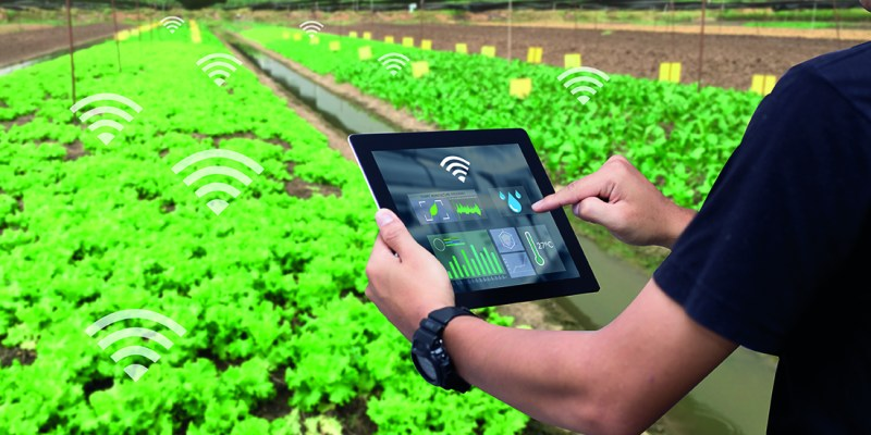 Democratising the IoT