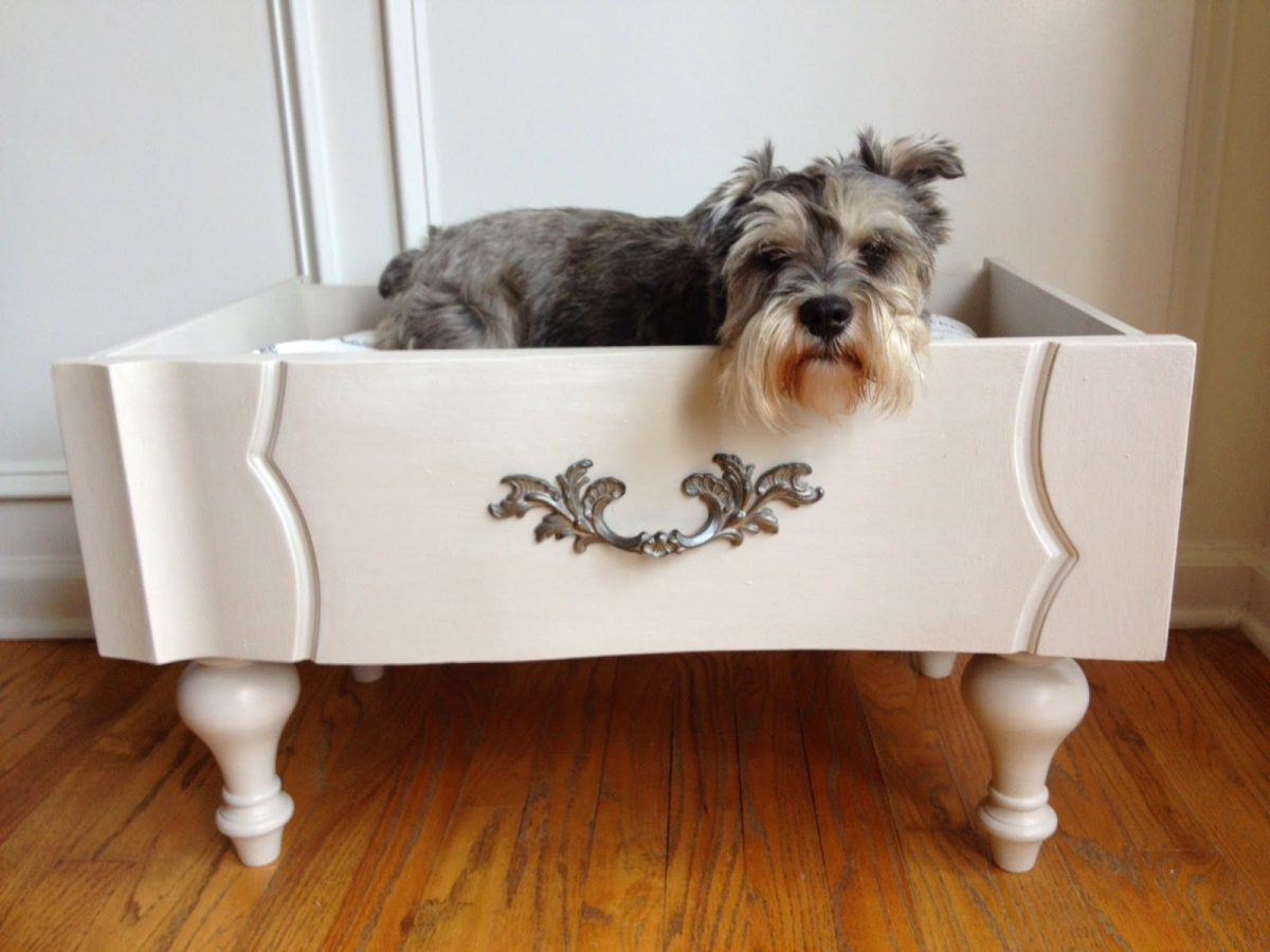 Pet-Bed-from-Upgraded-Old-Drawer