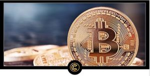 CryptocurrencyCodex 2 300x153 - Cryptocurrency Codex Review – Learn to Profit from the Crypto Craze