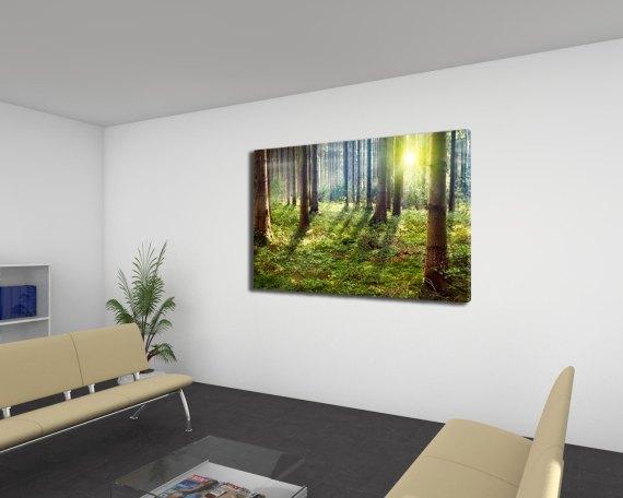 stampa su tela-raggi di sole nel bosco