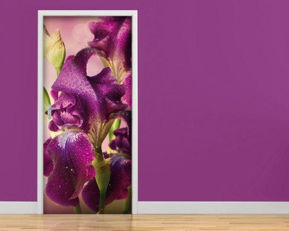 Adesivo per porte-gocce di rugiada sugli iris