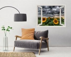 Finestra illusione-nubi sui girasoli