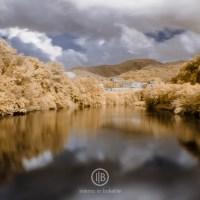 Il mio archivio di fotografia infrarosso