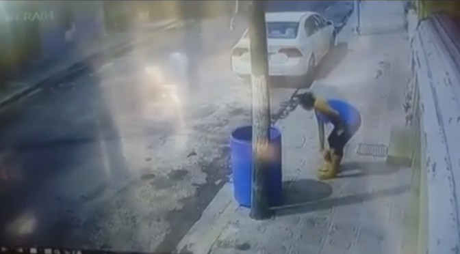 MUJER TIRA A PERRO DENTRO DE UNA BARRICA DE BASURA.