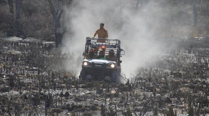 SOFOCAN CINCO INCENDIOS FORESTALES EN SEIS DÍAS