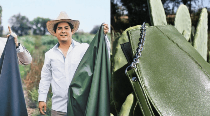 JÓVENES MEXICANOS CREAN CUERO ORGÁNICO A BASE DE CACTUS