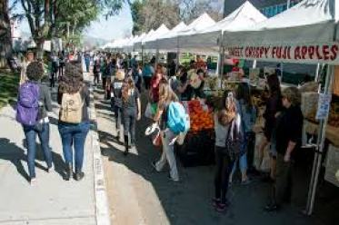 The 10 Of The Most Telltale Signs You Went to CSUN
