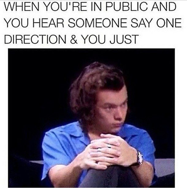 7 Memes You Will Recognize If You Used To Be A 1D Fan