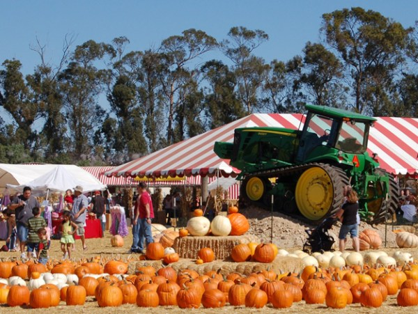 Fun Fall Activities To Do In the San Fernando Valley