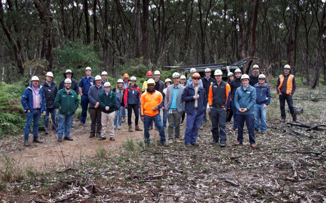 Interpine Plays Key Role in Making the Victorian Forest Monitoring Program Reach 5 Year Milestone