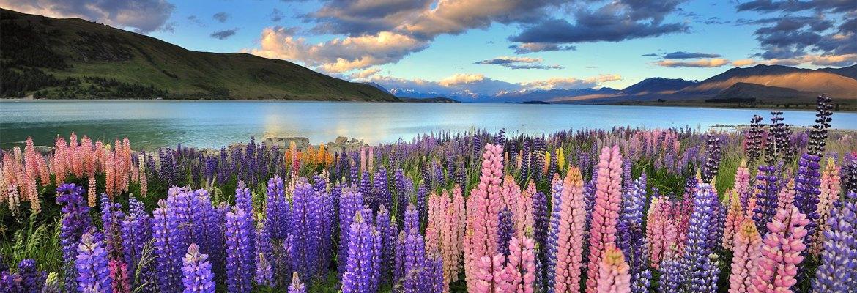Destinos na Nova Zelândia
