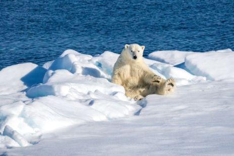 Arctic162698 - 500px