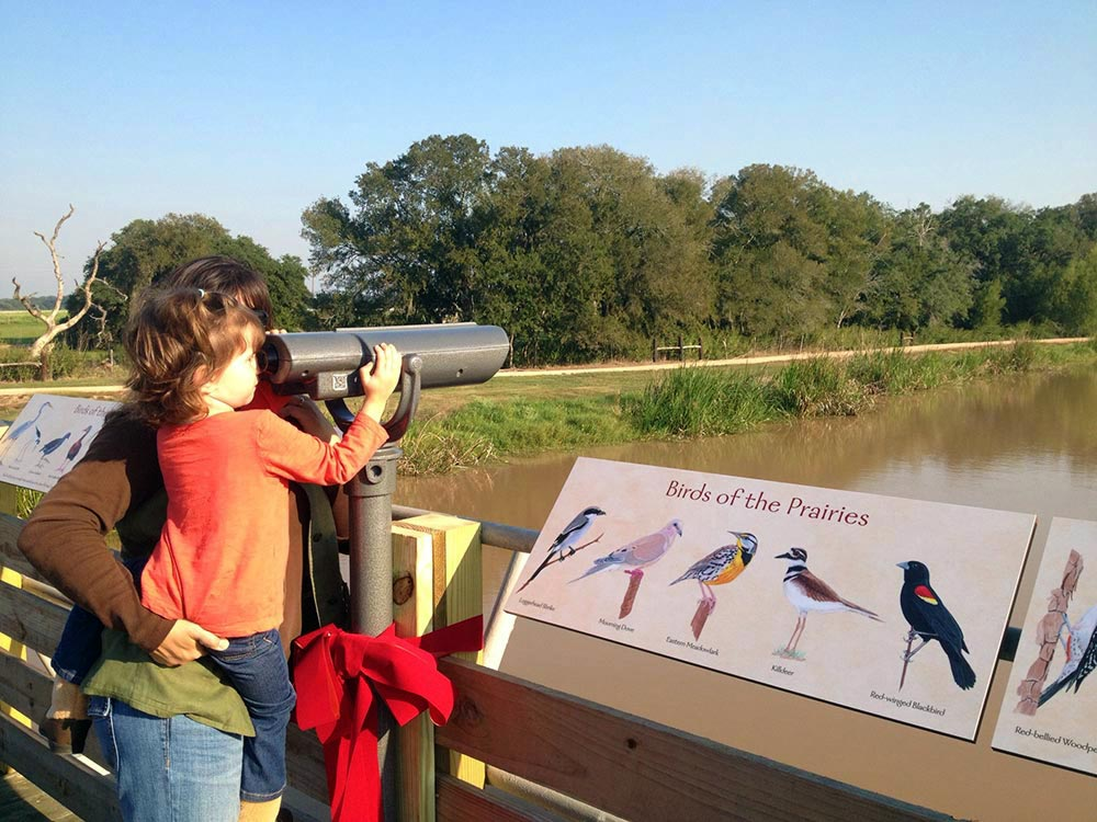 George Ranch Orin Covell Memorial Bird Exhibit
