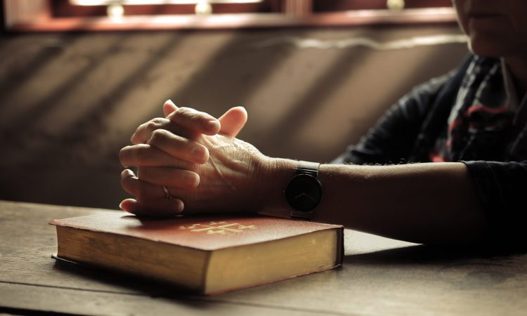 Seeing the Log: Why Evangelicals Need Self-Criticism. credit: lightstock.com