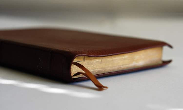 Practical Tips for Growing in Bible Literacy