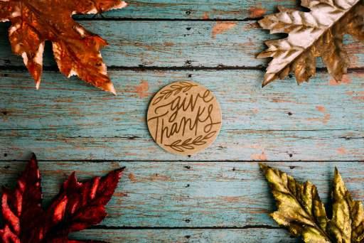 Thanksgiving leaves (credit: lightstock.com)