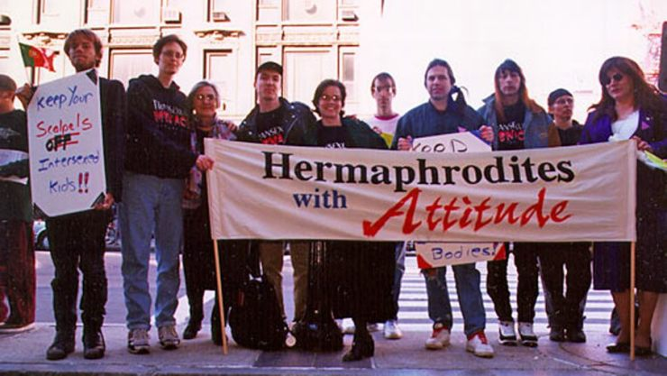 Hermaphrodites With Attitude