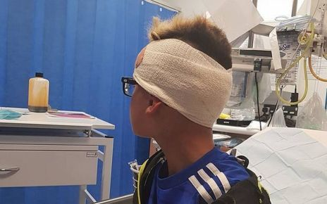 97278250 romeo1 - Nail hit into boy's head by plank-throwing 'bully'