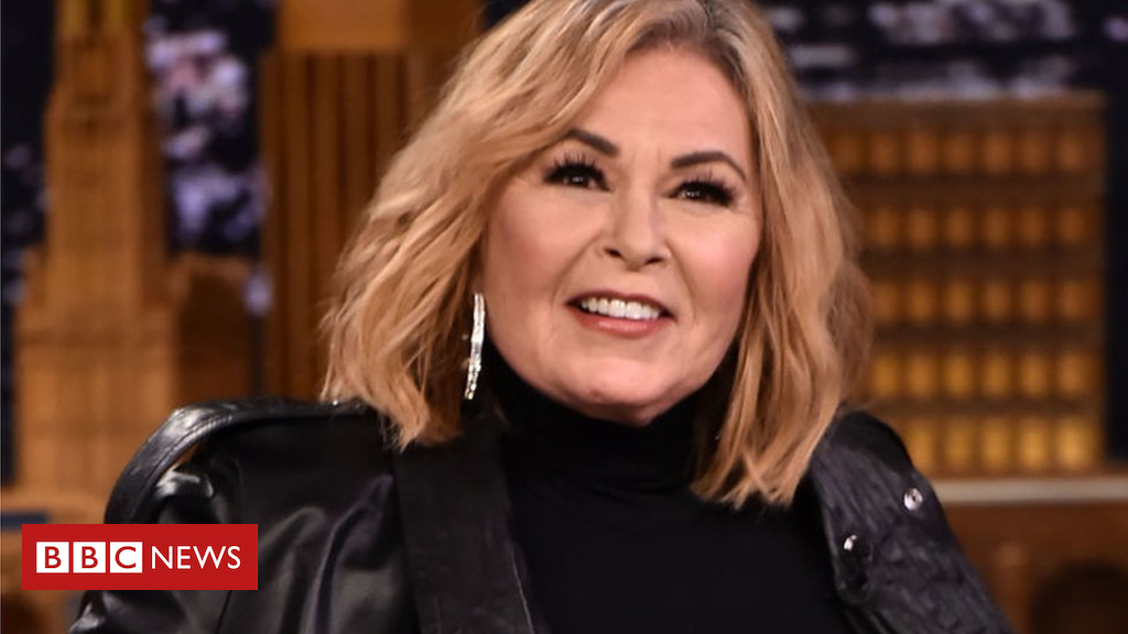 101798685 gettyimages 953336638 - Roseanne Barr regrets becoming 'hate magnet'