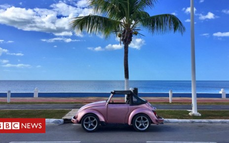 101900633 img 5101 - Volkswagen Beetle: Mexico's enduring love of a classic car