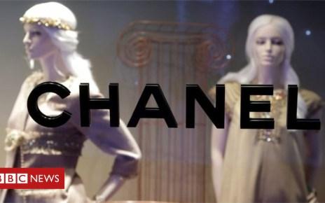 102148895 mediaitem102138944 - Chanel ends use of exotic skins in its fashion range