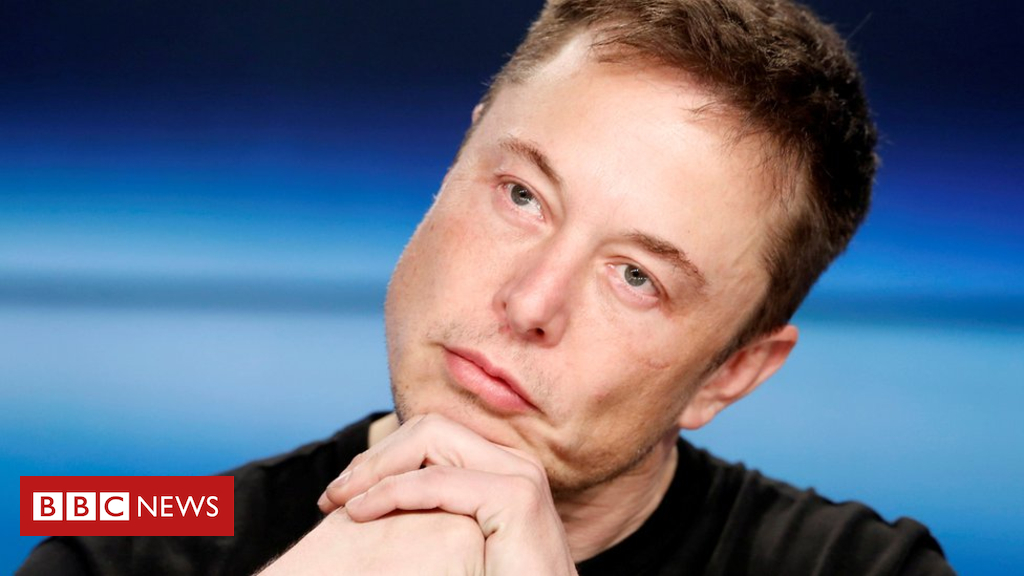 102240875 047179432 - Elon Musk accused of stealing farting unicorn image