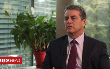 102384203 p06cw18g - WTO boss: Protectionism 'will hit global economy'