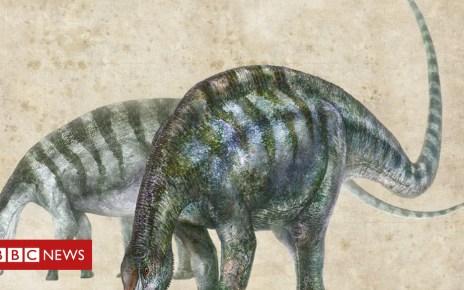 102667817 an artists rendering of lingwulong shenqi zhang zongda - China fossil tells new supercontinent story