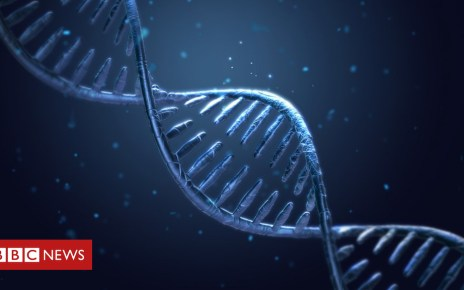 102685970 c0394583 dna double helix illustration spl - Gene editing is GM, says European Court