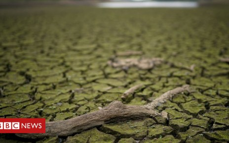 102718122 gettyimages 1004283138 1 - Climate change made heatwave 'twice as likely'