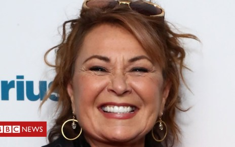 102718775 63b012a3 85c6 4f93 8591 b09d9f25ae5c - Roseanne Barr makes TV apology for controversial tweet