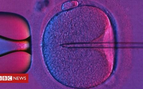 98489587 c0309241 in vitro fertilization spl - IVF: NHS couples 'face social rationing'
