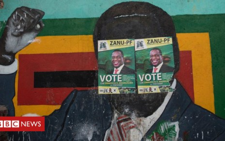 102847708 mugabe afp - Letter from Africa: Did Mugabe's support backfire?