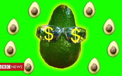 102966211 p06hfl55 - Avozilla: The giant avocado variety causing a stir