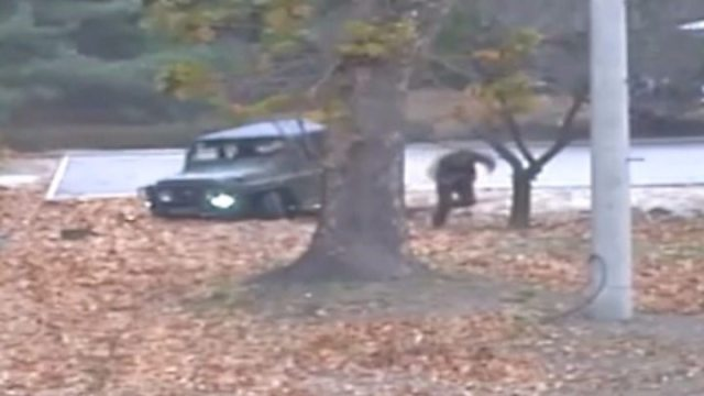 North Korea defector numbers 039drop039 under Kim - Koreas to remove guns and guard posts from Panmunjom 'truce town'