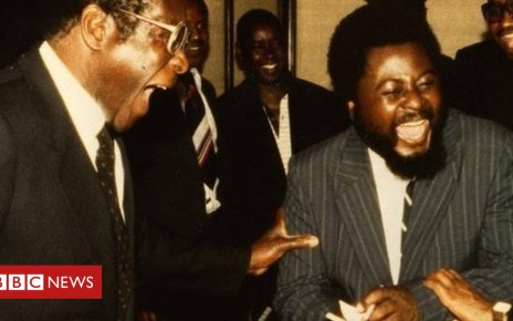 103379906 wilfmugabe1 - Letter from Africa: Zimbabwe's 'enemy of the people' returns home