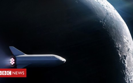 103464692 mediaitem103464691 - Elon Musk unveils first tourist for SpaceX 'Moon loop'