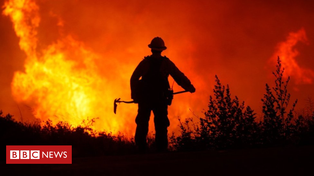104353729 mediaitem104353727 - Worries over CO2 emissions from intensifying wildfires
