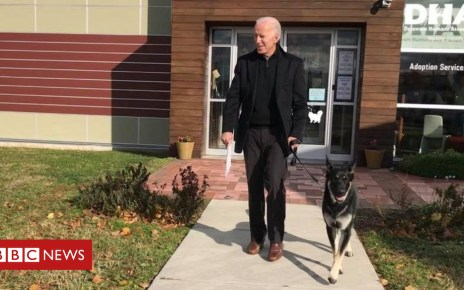104390573 mediaitem104390572 - Biden's adopted new dog - and other political pets