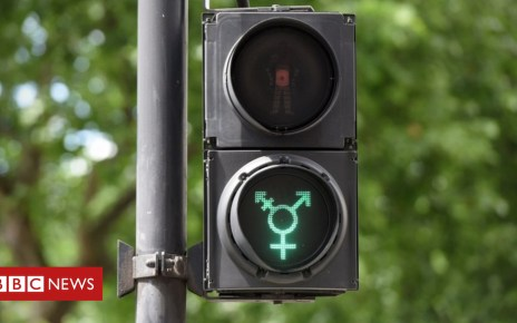104462413 transgendertrafficlightssymbol bbc - MPs begin debate on 'gender recognition' laws
