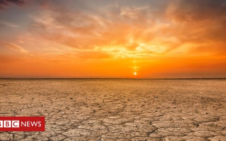 104530711 gettyimages 856939024 - Climate change: Last four years are 'world's hottest'