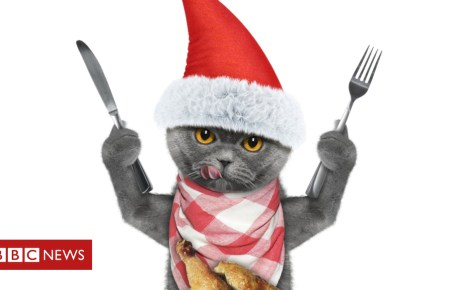 104857553 gettyimages 629247380 - What do you know about Christmas dinner?
