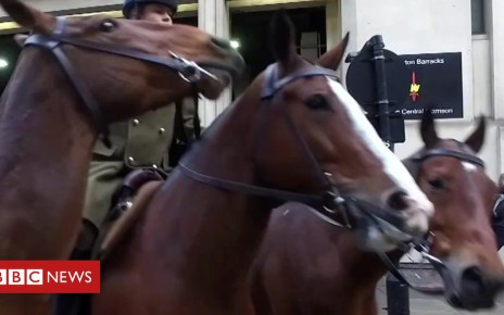 104909181 p06w9q02 - Why the King's Troop take over central London once a week
