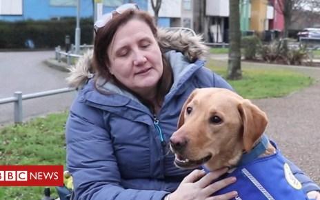 105340693 p06z2rxz - 'My husband left and a dog became my carer'