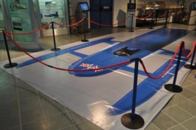 Bluebird floor-covering in the Ruskin Museum