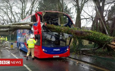 105563109 mediaitem105563108 - Tree smashes on to double-decker bus in Poole