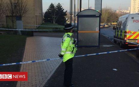 105660429 dzwsegwwsae5flr - Birmingham college stabbing: Student dies in hospital