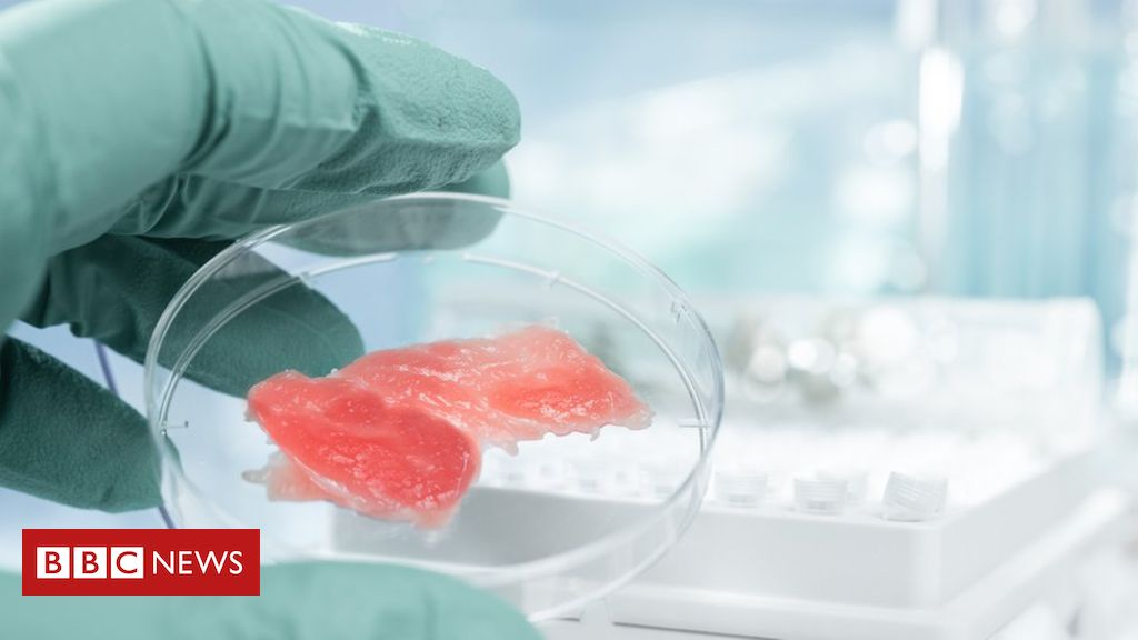 105696661 gettyimages 471803345 - Cultured lab meat may make climate change worse